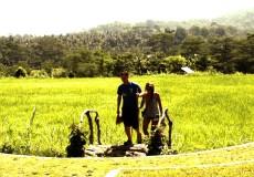 Bali-CountrySide-bali tour
