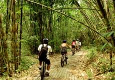 Bali-CountrySide-bali- tour