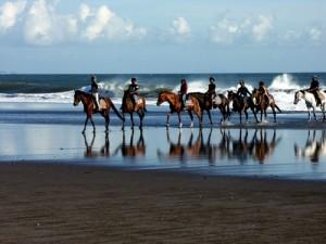 Bali-Horse-Riding-Bali-Tour