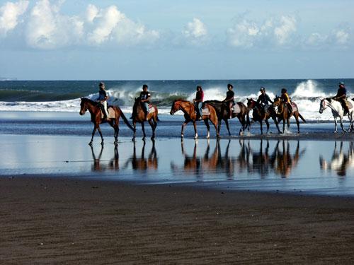 Bali Horse Riding and Ubud Tour