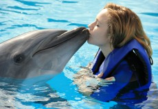 Dolphin-Swim-Tour-bali-tour