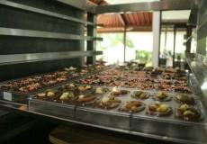 Pod- Chocolate -Ubud-Bali-Tour