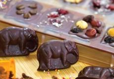 Pod-Chocolate-Ubud-Bali-Tour
