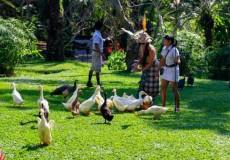 bali-bird-park-bali – tour