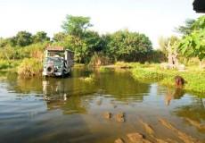 bali safari marine-park-bali-tour