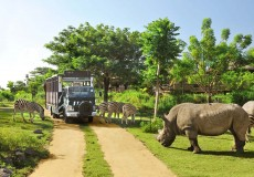 bali-safari-marine-park-bali-tour