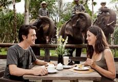 bali-zoo- park-bali-tour