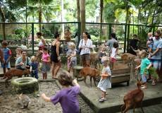 bali-zoo-park bali-tour