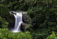 tegenungan-waterfall-bali-tour