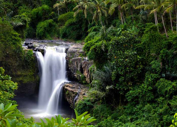 Bali Tour Packages 7 Days And 6 Nights Bali Tour Operators
